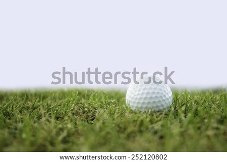golf-ball on course isolate - stock photo