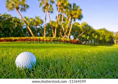 golf ball on fairway of lovely tropical golf course with dewy grass and blue sky