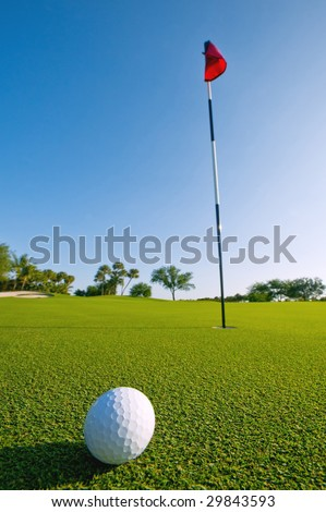 golf ball on green at ground level extreme wide angle (focus on ball)