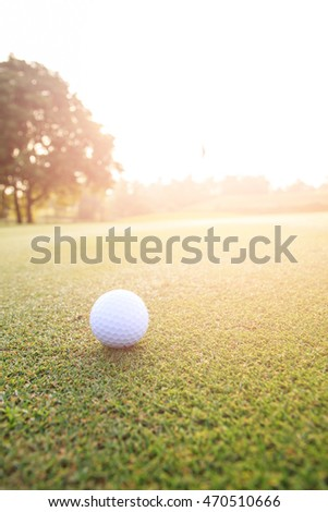 Golf ball on green grass in golf course with beautiful nature and sunlight.