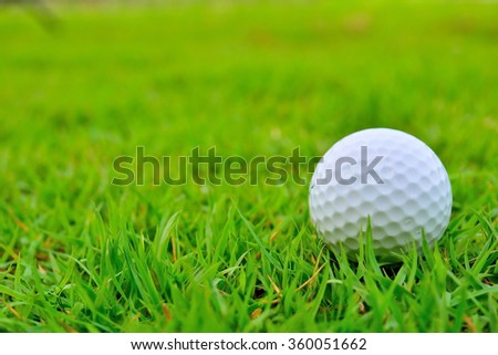 Golf ball on the green. - stock photo