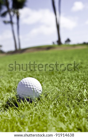 Golf ball rests in the rough with a sand trap and palm trees in the background. - stock photo