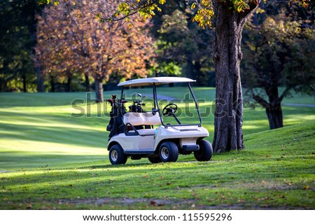 Golf cart parked. Trees in background. - stock photo
