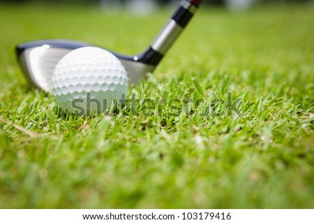 Golf club and ball in green grass - stock photo