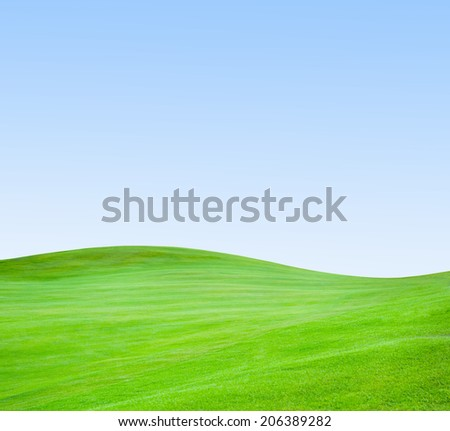Golf club. Green golf field and ball in grass - stock photo
