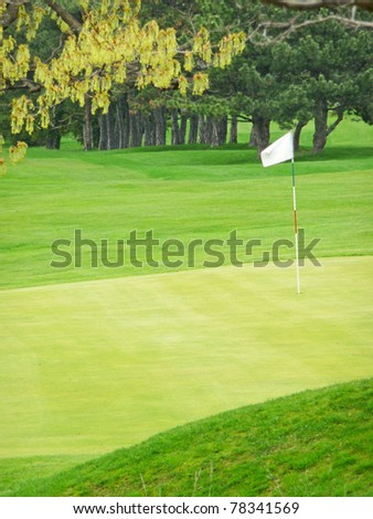 Golf course green - stock photo