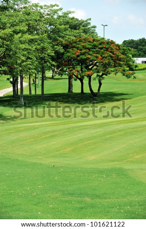 Golf course  on a sunny day. - stock photo