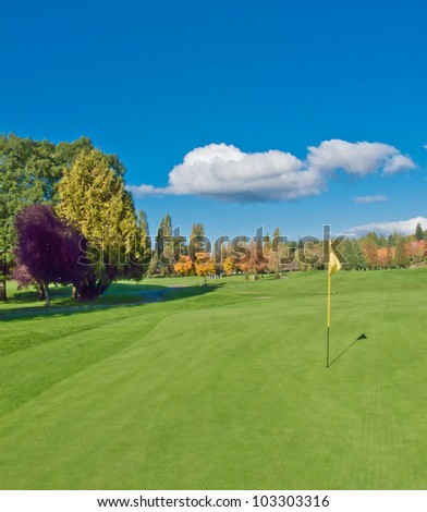 Golf course with the yellow flag. - stock photo