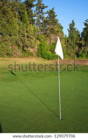 Golf green and flag - stock photo