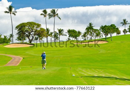 Golf place with gorgeous green and palm tree over blue sky with white clouds view - stock photo