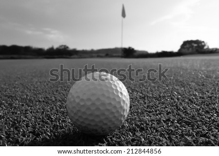 Golfball on Green in Black and White - stock photo