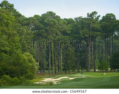 Golfer and maintenance personal on a Myrtle Beach golf course in South Carolina. - stock photo