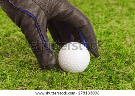Golfer pick up the golf ball on grass closeup - stock photo