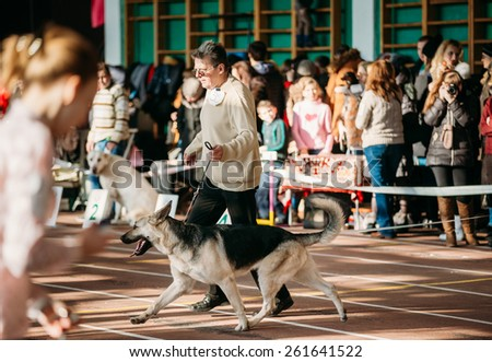 GOMEL, BELARUS - FEBRUARY 1, 2015: People and dogs visit Palace athletics exhibition  -International dog show, important event dedicated to dogs and their owners. - stock photo