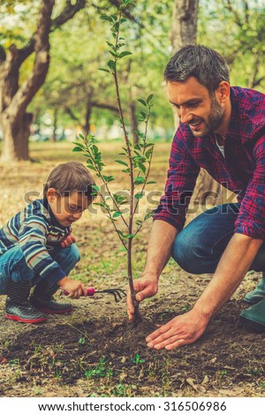 Good day for gardening. Happy young man planting a tree while his little son helping him - stock photo