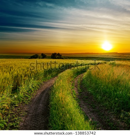 good sunset and dirty road in green spring field - stock photo