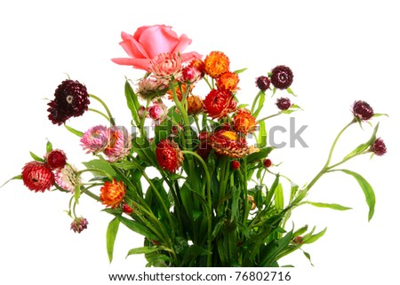 Goodly summer bouquet on white background - stock photo