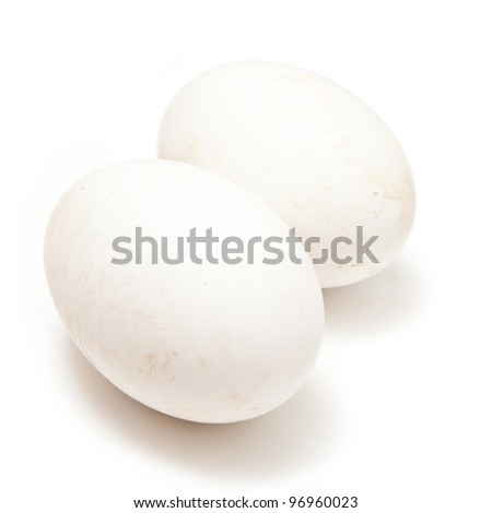Goose eggs isolated on a white studio background.