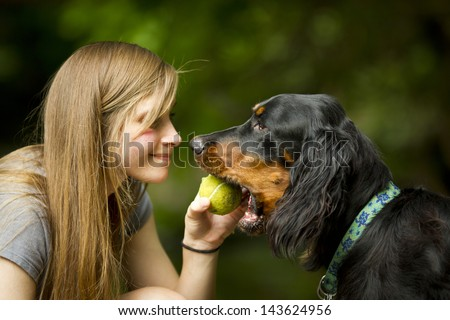 Gordon setter taking ball from young pretty girl owner. - stock photo