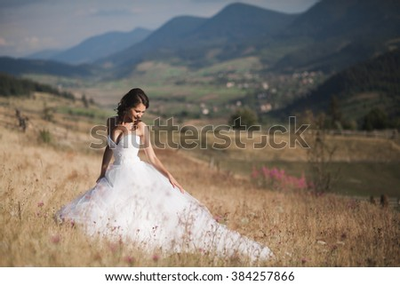 Gorgeous bride in elegant dress posing at sunny summer day on a background of mountains - stock photo