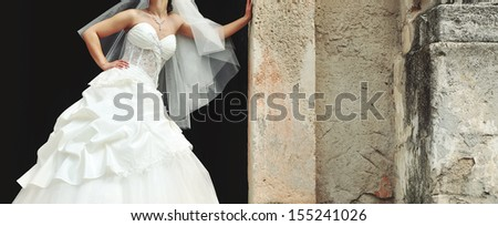 gorgeous  bride posing on her wedding day, summertime