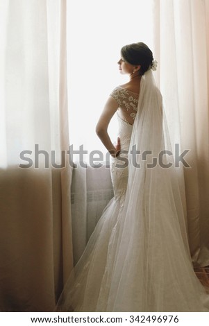 gorgeous happy luxury stylish brunette bride near a window on the background of vintage room