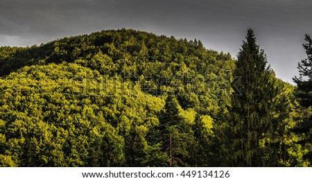 Gorgeous mountains and hills with woods and lawns. Resort lands in Ukraine - stock photo