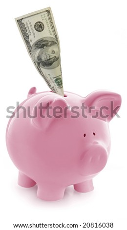 Gorgeous pink piggy bank, with US $100 bill in slot. - stock photo