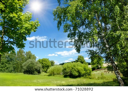 Gorgeous summer landscape bordered with trees at nice sunny weather - stock photo