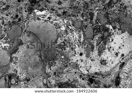 Gorgeous textured images of old marbled paper. Abstract grunge vintage background with genuine original marbleized effect. Scan image has a horizontal format. Black, white and gray scale colors