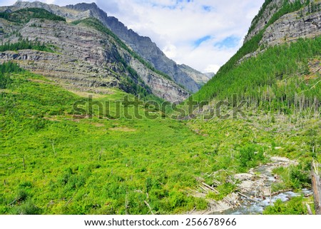 gorgeous view of the mountains in bright sunlight along the Avalanche lake trail in Glacier National Park - stock photo