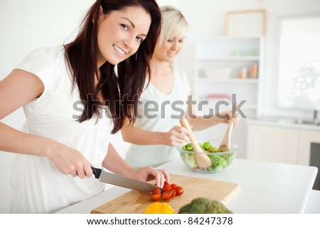 Gorgeous young Women preparing dinner in a kitchen - stock photo