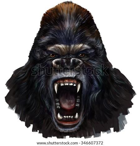 gorilla scream digital painting/ gorilla scream - stock photo