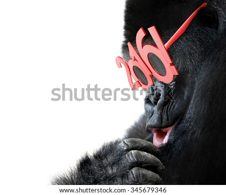 Gorilla with big red 2016 New Years glasses celebrating Year of the Monkey - stock photo