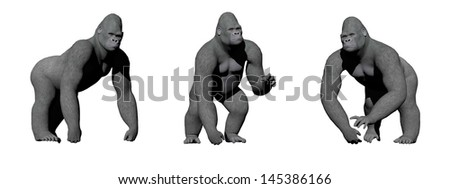 Gorillas with hand on the ground in four different positions in white background - stock photo