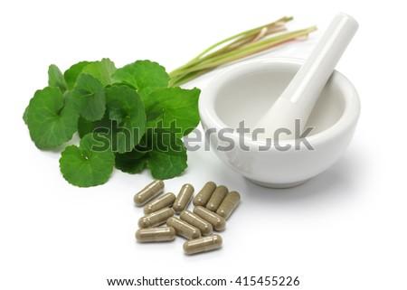 gotu kola, asiatic pennywort, centella asiatica, medicine capsule, mortar and pestle - stock photo