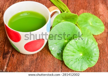 Gotu kola leaf and beverage on the wood - stock photo