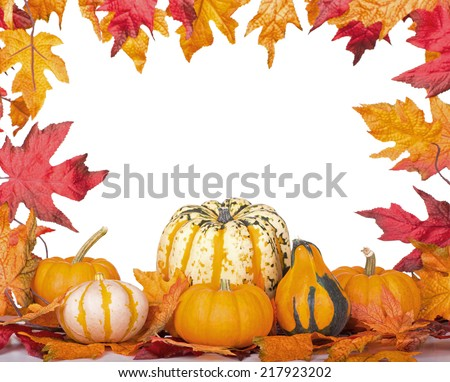 Gourds and squash with an autumn leaf border on a white background