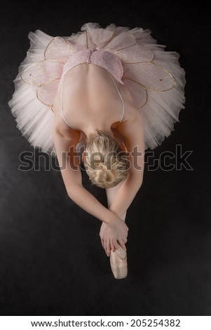 Graceful ballerina bending forward in pink tutu in the ballet studio - stock photo