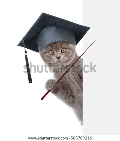 Graduated cat holding a pointing stick and points on empty banner. isolated on white background