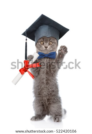 Graduated cat with diploma standing on hind legs. isolated on white background.