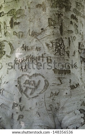 Graffiti markings on an old tree trunk speak of love in days gone by. - stock photo