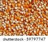 Grain corn maize food corn seed background - stock photo