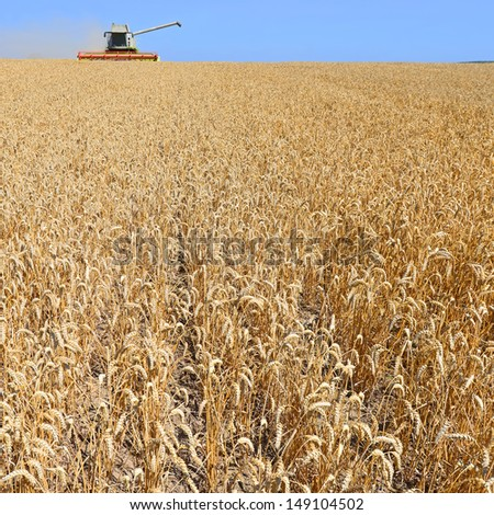 Grain harvesting combine - stock photo