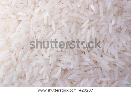 grain of rice close up - stock photo