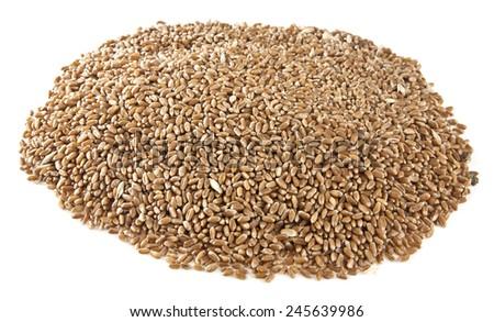 grain on a white background - stock photo