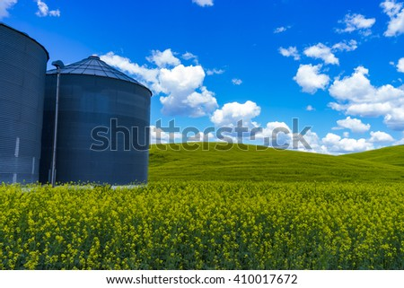 Grain silos in the field of canola flowers in Washington state - stock photo