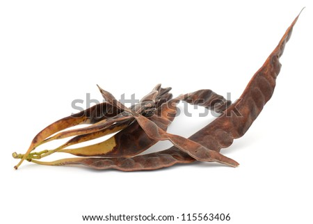 Grain tamarind plants