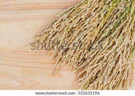 grains, ear of rice on the wooden background, copyspace for text