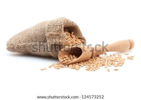 Grains in small burlap sack and wood scoop isolated on white background. - stock photo